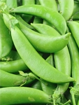 Peas (Sugar Snap) Organic Seeds